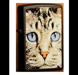Зажигалка Zippo Изображение Кота