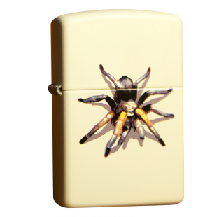 Зажигалка Zippo Tarantula